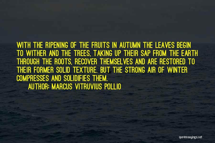 Marcus Vitruvius Pollio Quotes 653179