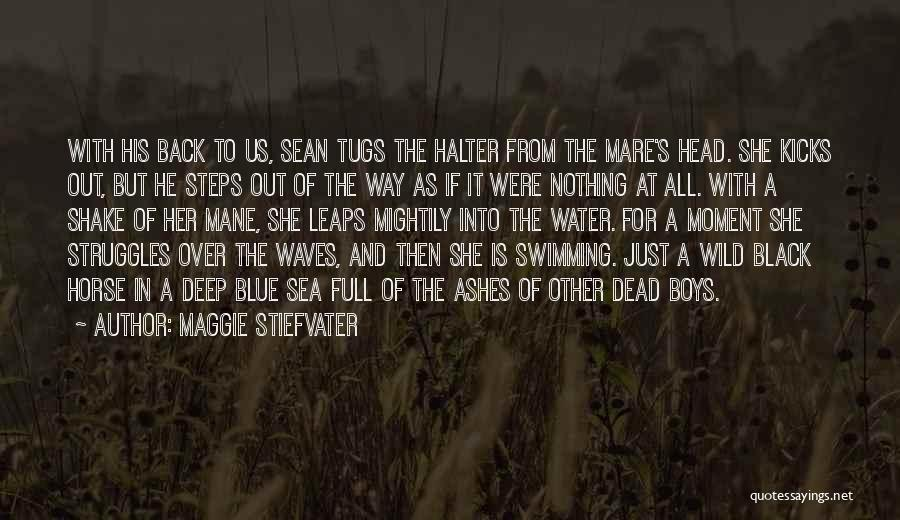 Mare Horse Quotes By Maggie Stiefvater