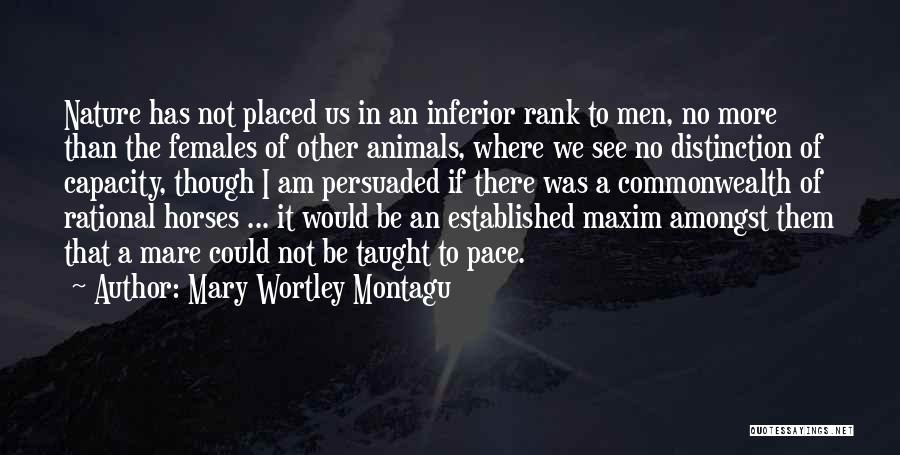 Mare Horse Quotes By Mary Wortley Montagu