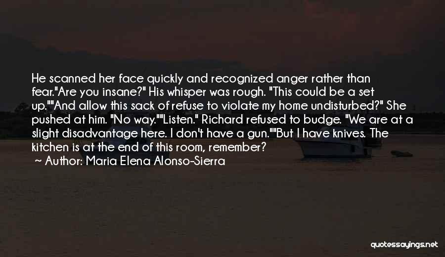 Maria Elena Alonso-Sierra Quotes 1511086