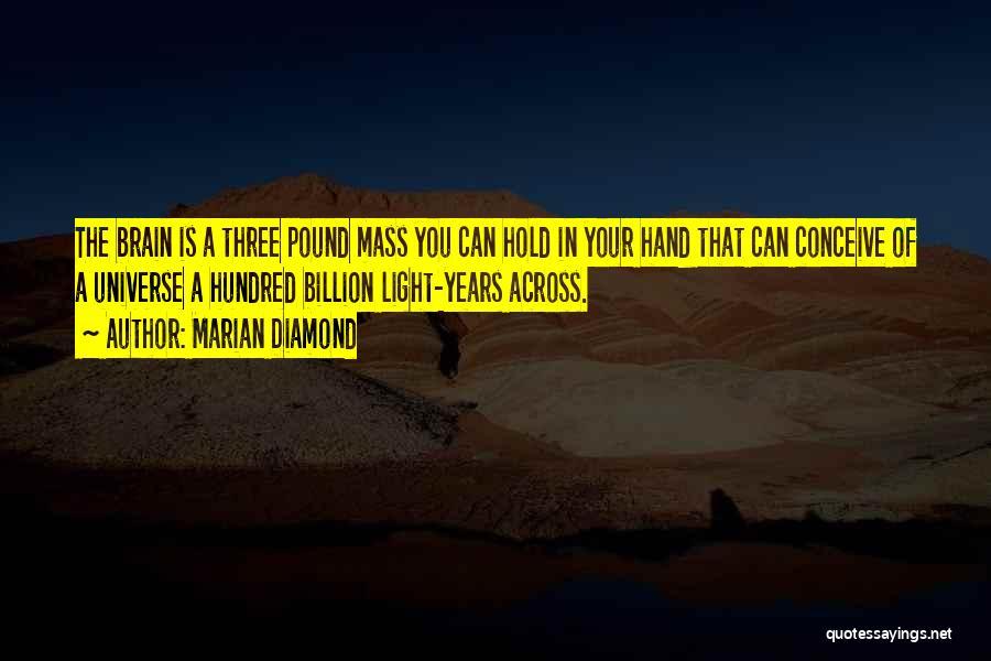 Marian Diamond Quotes 1017104