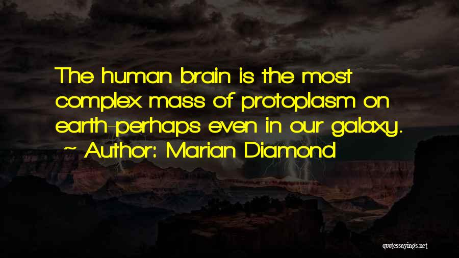 Marian Diamond Quotes 456594
