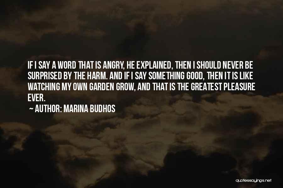 Marina Budhos Quotes 2161330
