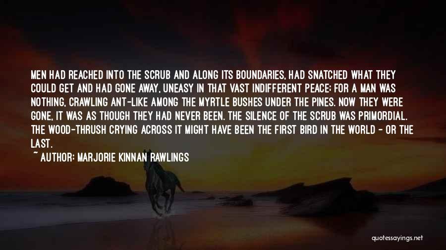 Marjorie Kinnan Rawlings Quotes 1243154