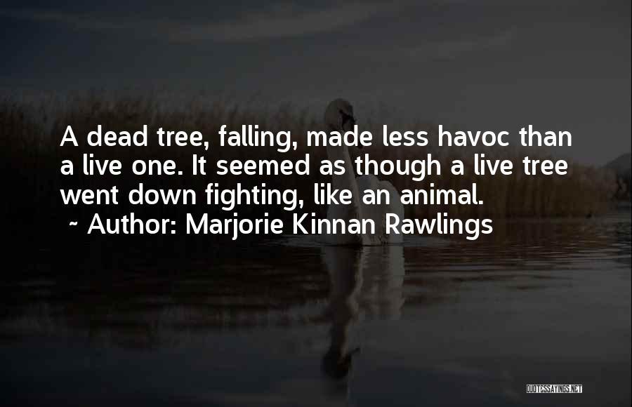 Marjorie Kinnan Rawlings Quotes 387826