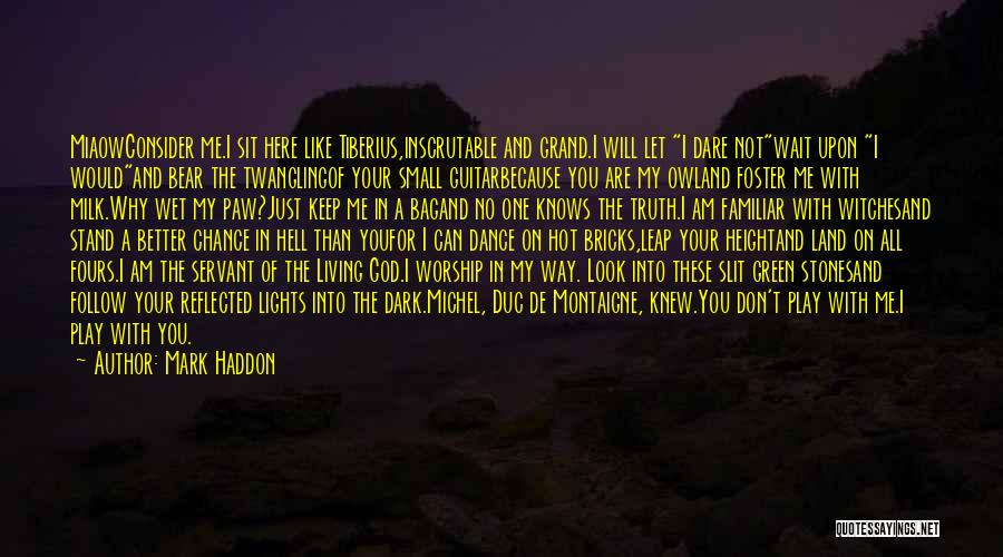 Mark Foster Quotes By Mark Haddon