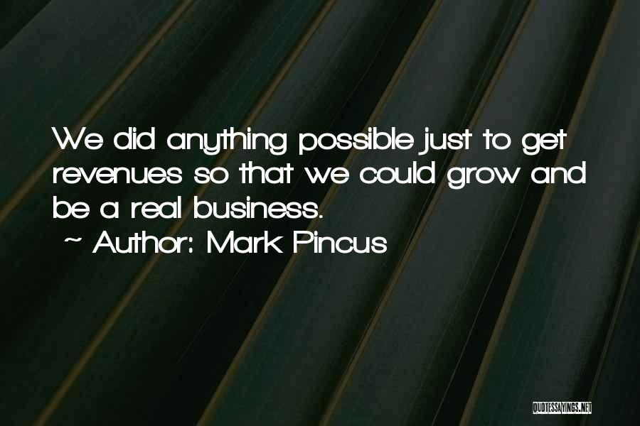 Mark Pincus Quotes 401630