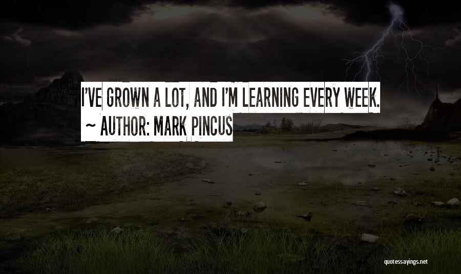 Mark Pincus Quotes 529956
