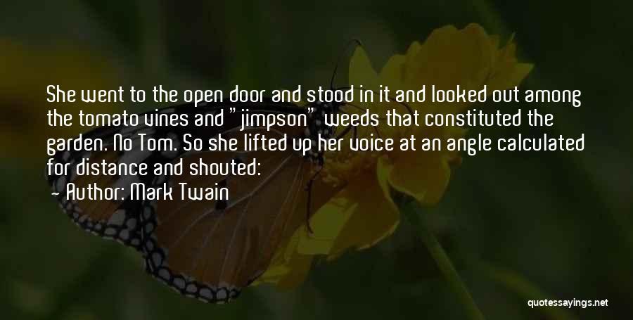 Mark Twain Quotes 900914