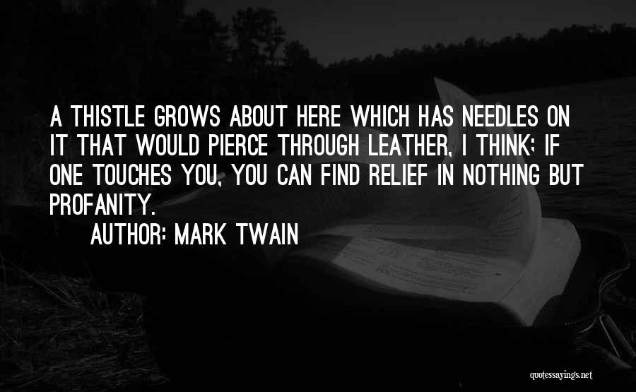 Mark Twain Quotes 934792