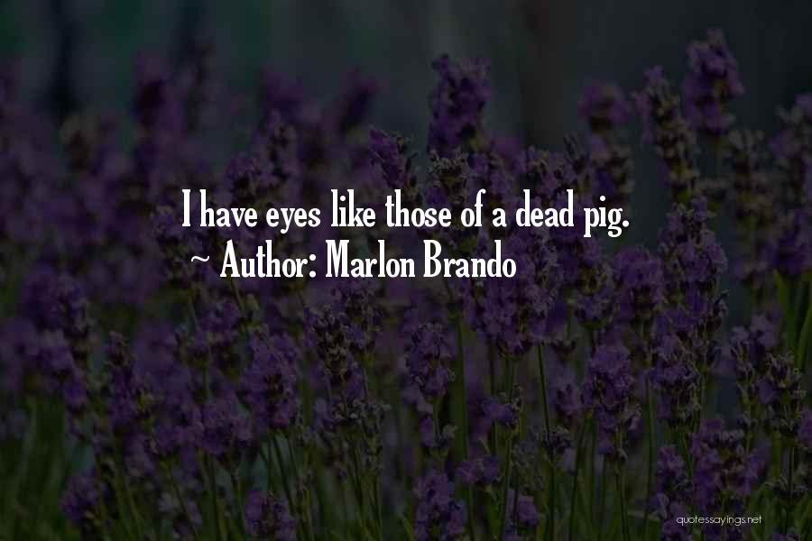 Marlon Brando Quotes 170907