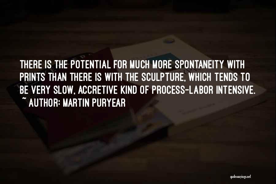 Martin Puryear Quotes 1871873
