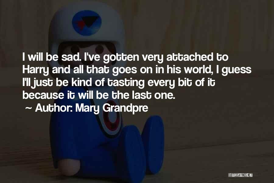 Mary Grandpre Quotes 251138