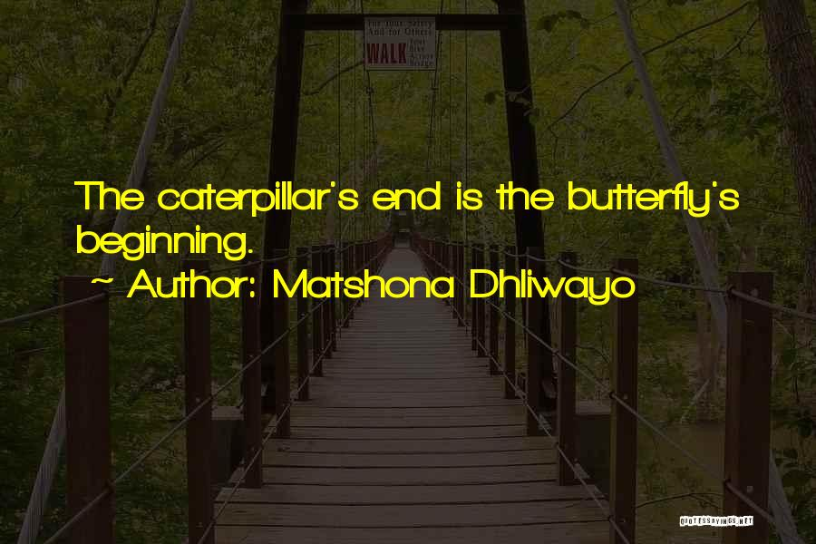 Matshona Dhliwayo Quotes 1033353
