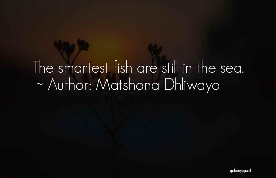 Matshona Dhliwayo Quotes 1501404