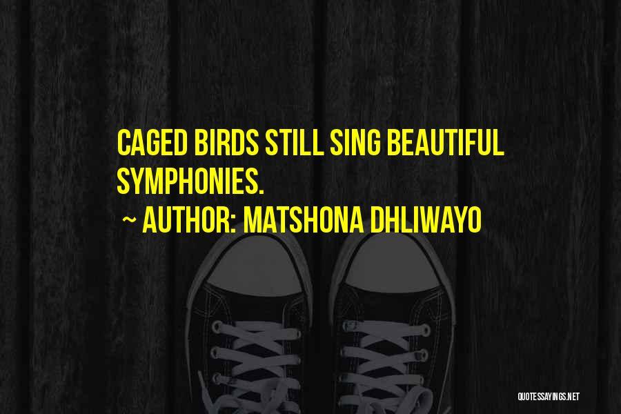 Matshona Dhliwayo Quotes 673387
