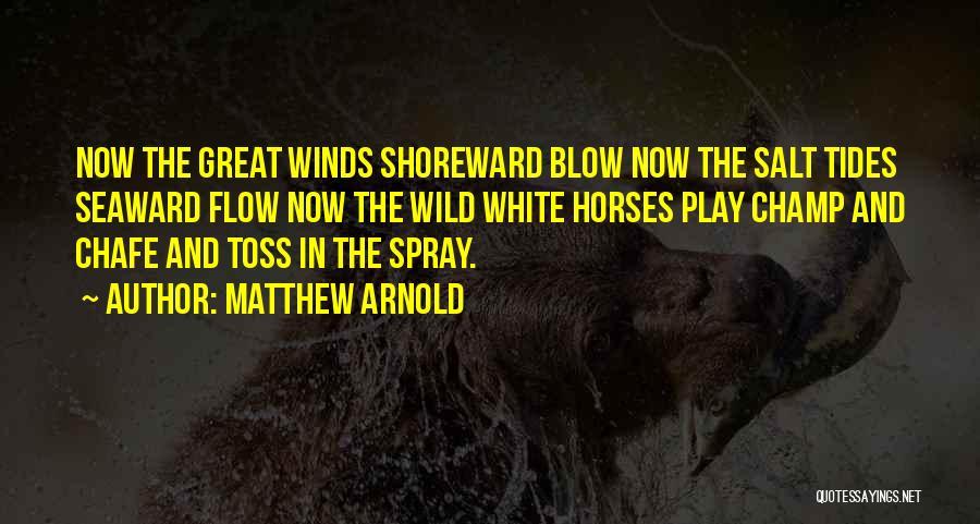 Matthew Arnold Quotes 442243