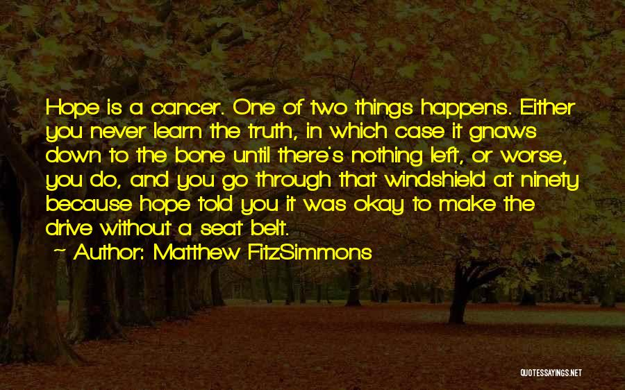 Matthew FitzSimmons Quotes 2068340