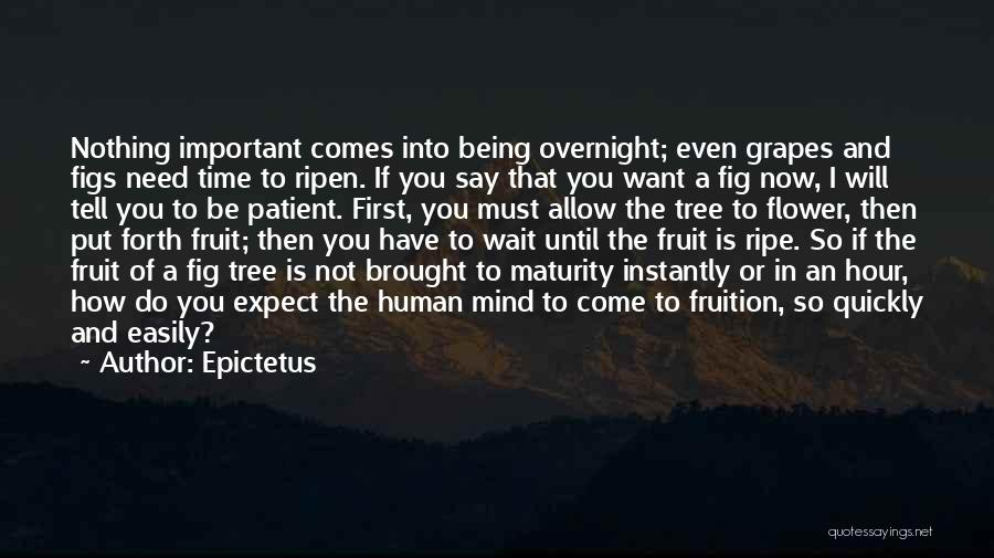 Maturity Comes Quotes By Epictetus