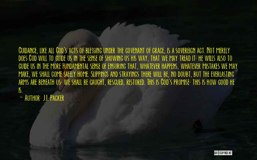 May God Guide Us Quotes By J.I. Packer