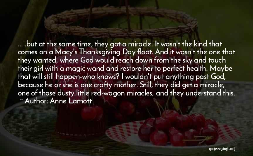 Maybe A Miracle Quotes By Anne Lamott