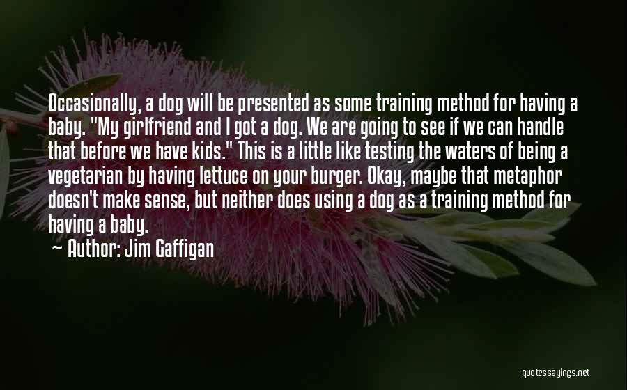 Maybe I'll Be Okay Quotes By Jim Gaffigan