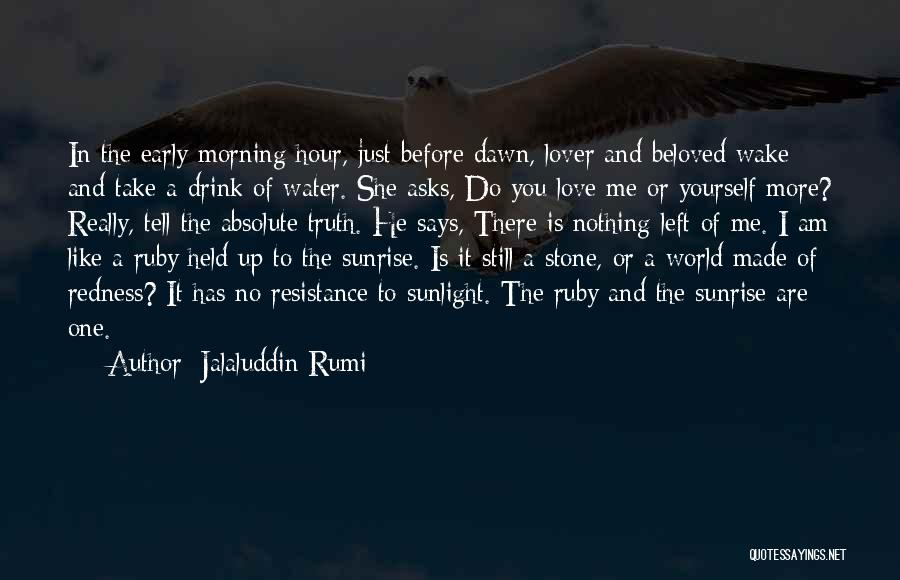 Me Before You Love Quotes By Jalaluddin Rumi