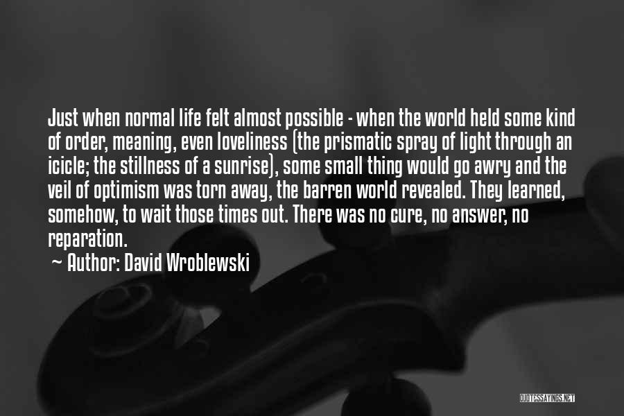 Meaning Of Life And Death Quotes By David Wroblewski