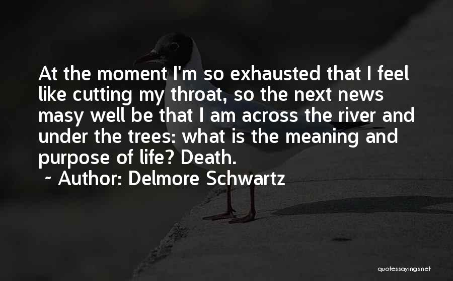 Meaning Of Life And Death Quotes By Delmore Schwartz