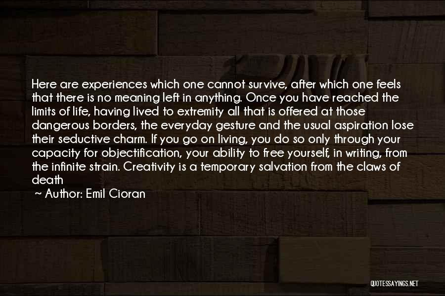 Meaning Of Life And Death Quotes By Emil Cioran