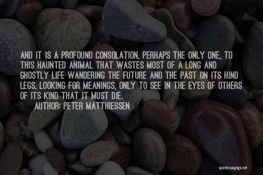 Meaning Of Life And Death Quotes By Peter Matthiessen