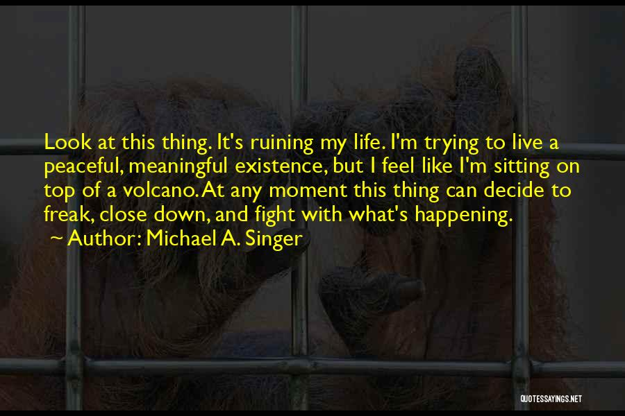 Meaningful Existence Quotes By Michael A. Singer