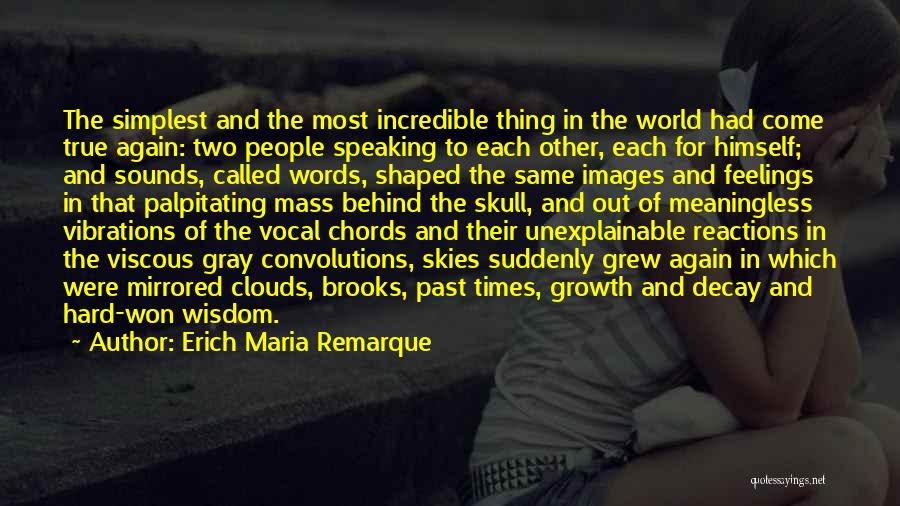 Meaningless Words Quotes By Erich Maria Remarque