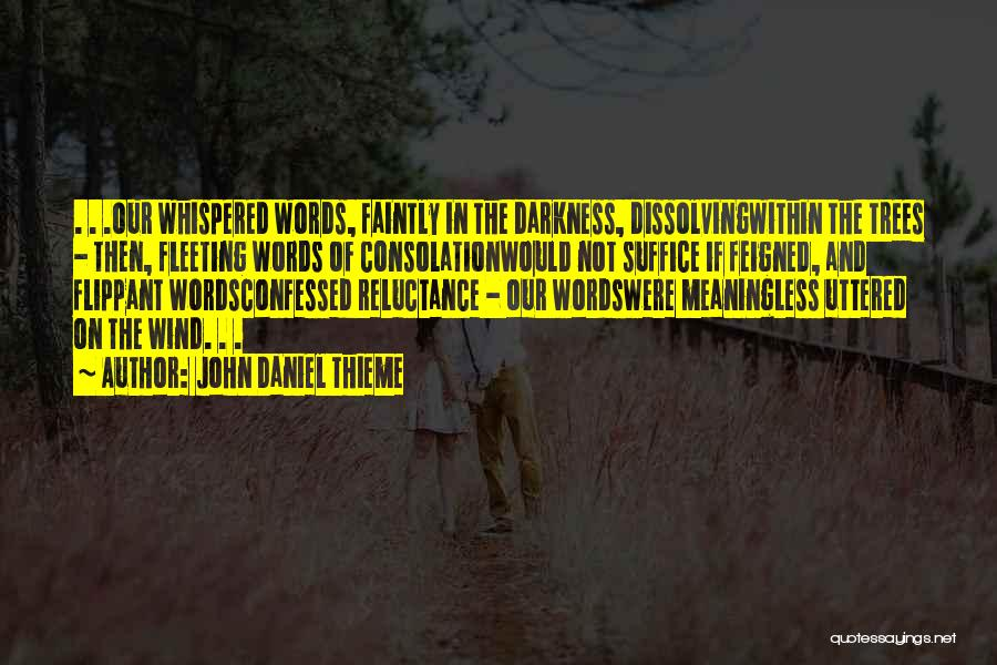 Meaningless Words Quotes By John Daniel Thieme