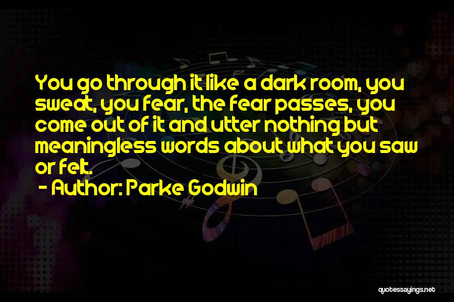 Meaningless Words Quotes By Parke Godwin