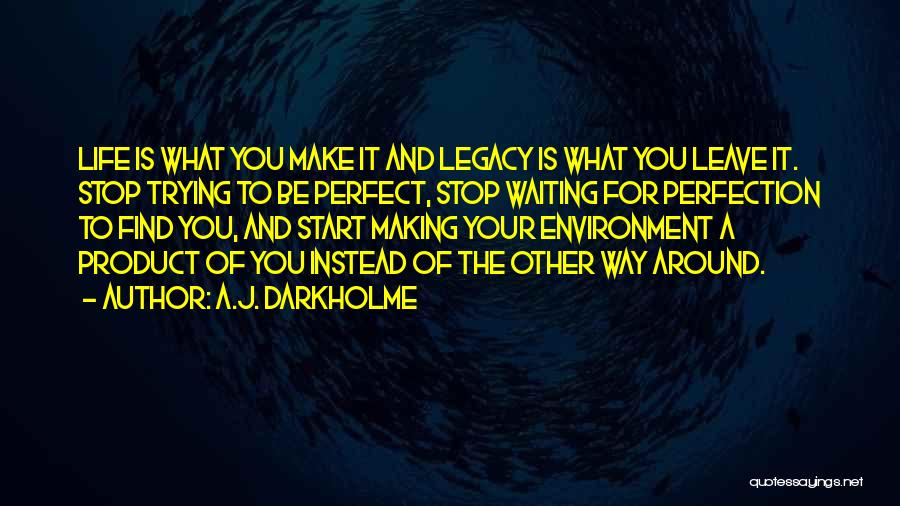 Meaninglessness Of Life Quotes By A.J. Darkholme