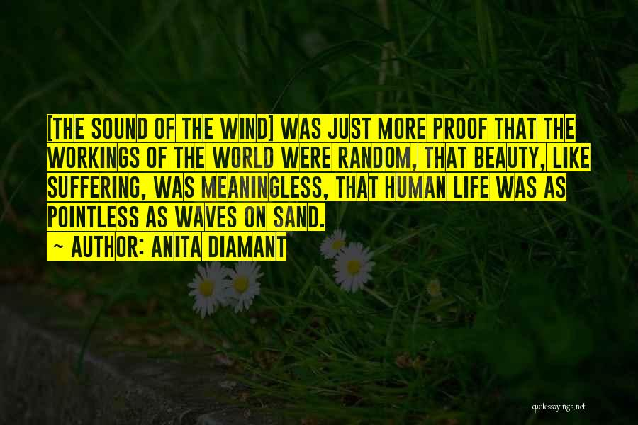 Meaninglessness Of Life Quotes By Anita Diamant