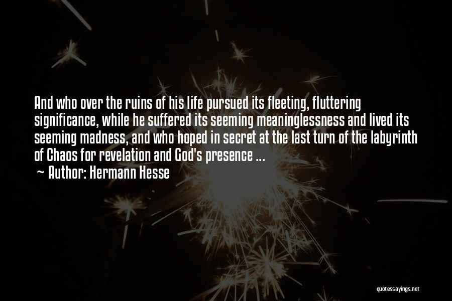Meaninglessness Of Life Quotes By Hermann Hesse