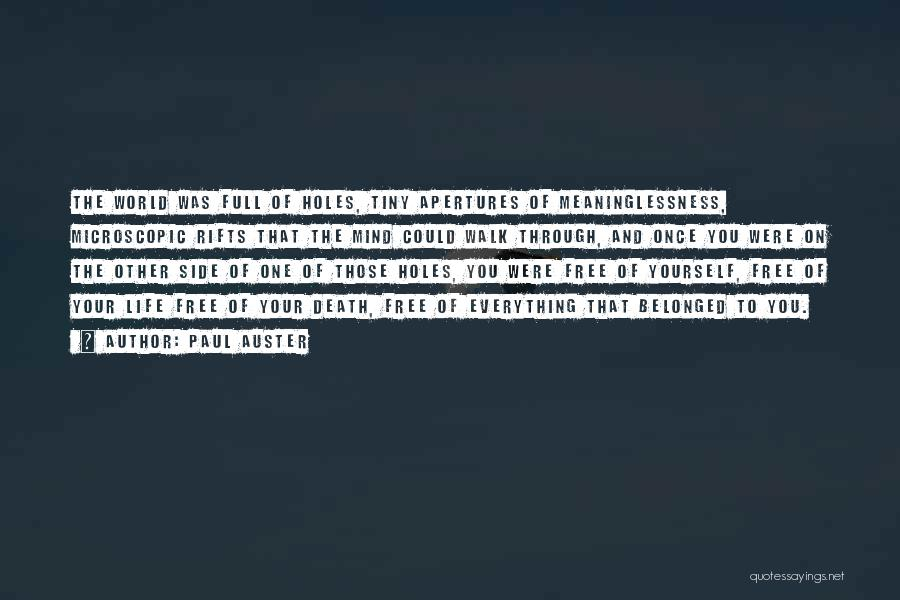 Meaninglessness Of Life Quotes By Paul Auster