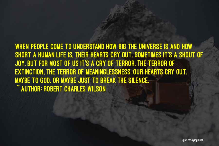 Meaninglessness Of Life Quotes By Robert Charles Wilson