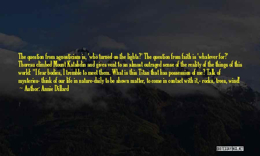 Meet Me Quotes By Annie Dillard