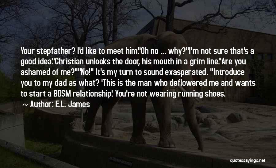 Meet Me Quotes By E.L. James