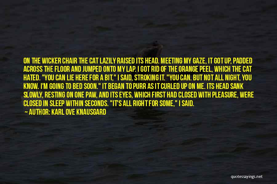 Meeting Soon Quotes By Karl Ove Knausgard