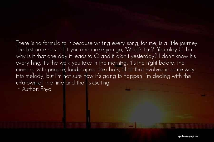 Meeting You For The First Time Quotes By Enya