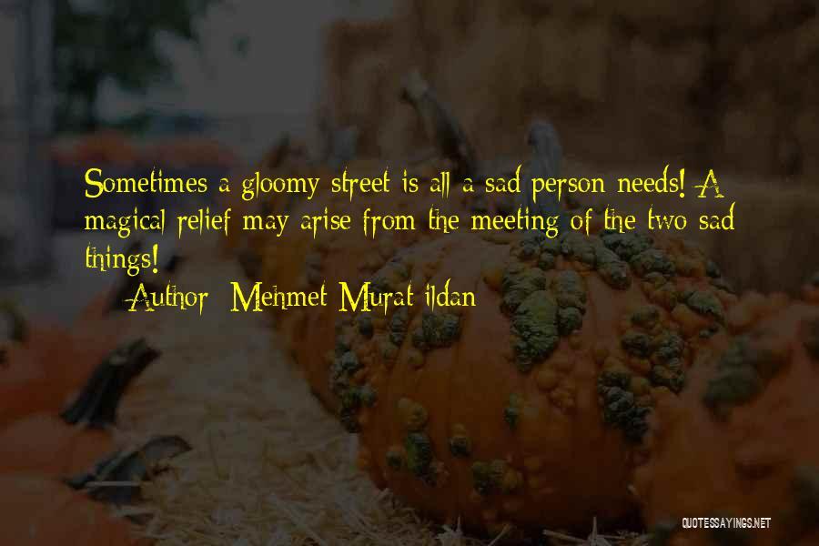 Meeting Your Needs Quotes By Mehmet Murat Ildan