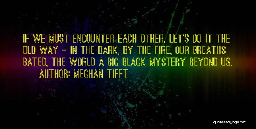 Meghan Tifft Quotes 1009192