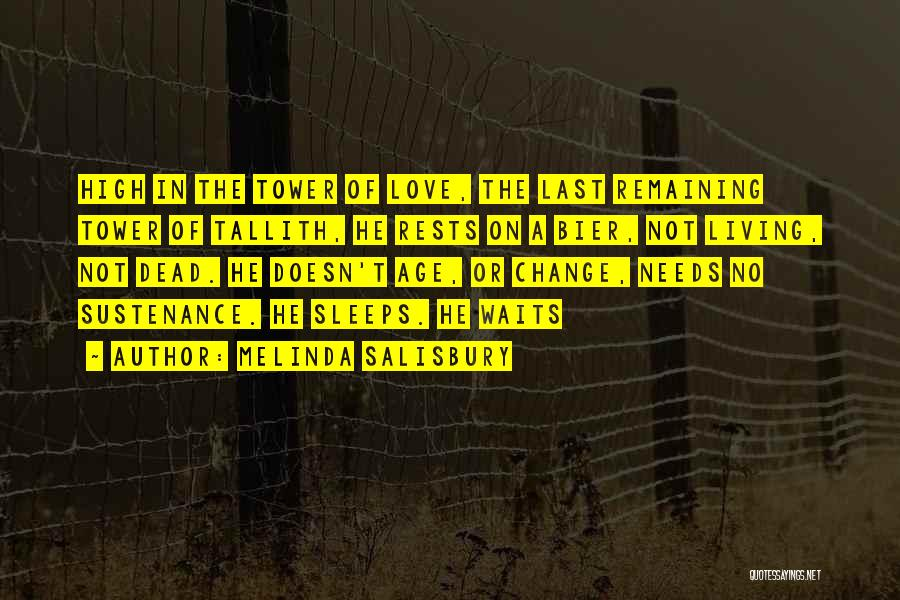 Melinda Salisbury Quotes 603516