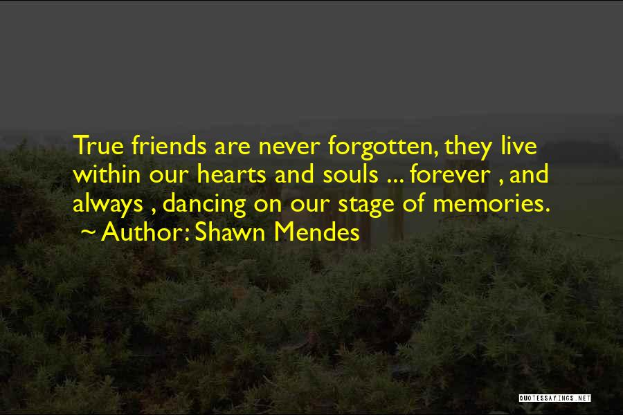 Memories And Friends Quotes By Shawn Mendes