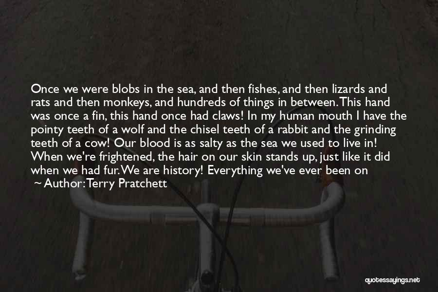 Memories Is All We Have Quotes By Terry Pratchett