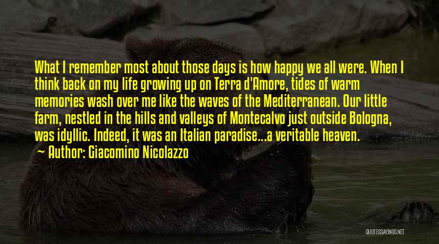 Memories When You Were Little Quotes By Giacomino Nicolazzo